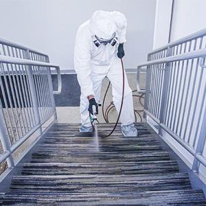 Carpet Sprayer Disinfection