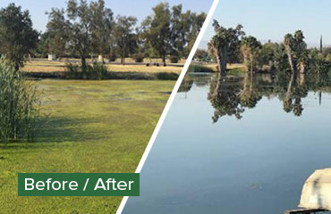 Before After Ponds and Lagoons