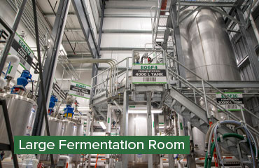 Large Fermentation Room