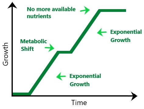 bacilli growth ability chart